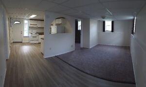 Recently Renovated 1 Bedroom Walkout Basement Suite