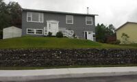 Large Newly Renovated House In Millidgeville. H/L Not Inc