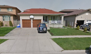 Large spacious house in lower Stoney Creek - ALL INCLUSIVE!