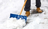 TopNotch Residential Snow Removal