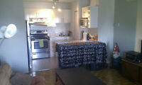 Metro Longueuil, 3 1/2 Available July 1 - First Month FREE!