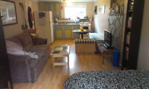 Bright Mountain View Bachelor Suite For Rent