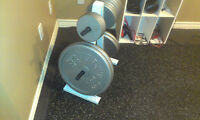 Barbell, dumbbell handles, free weights and weight tree
