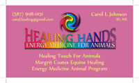 REIKI AND HEALING TOUCH FOR ANIMALS