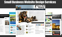 Website Design Services for Small Business