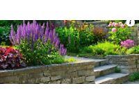 All garden work undertaken . Fences, grass cutting, Landscaping , patios cleaned etc