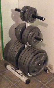 Olympic weight plates and stand