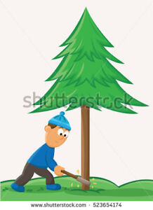 Tree cutting/Lot clearing