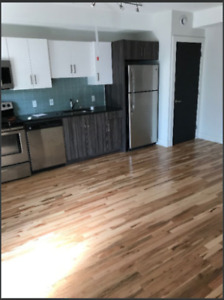 Room in DOWNTOWN Halifax, newly renovated apartment for rent