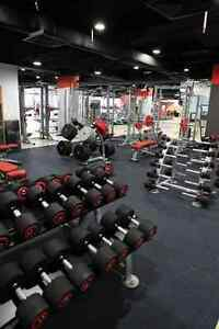 Titan fitness in Coogee 5 month membership - no join up fee +$100 Coogee Eastern Suburbs Preview