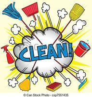 FEMALE CLEANER LOOKING TO CLEAN AND/OR ORGANIZE