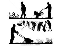 MAINTENANCE SERVICES GARDENING PAINTING CLEANING RUBBISH REMOVAL