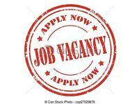Job for Joiner carpenter builder