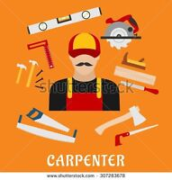 Carpenter and renovation specialist