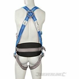 Silverline REstraint Harness and Lanyard