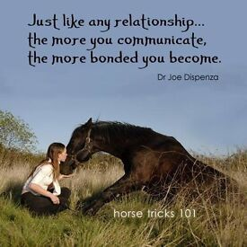Discussion Group – OUR RELATIONSHIP & ATTACHMENT with HORSES, other animals & their healing powers
