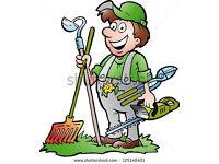 Gardening /Landscaping