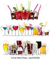 Bartending girls for weddings and socials or home parties