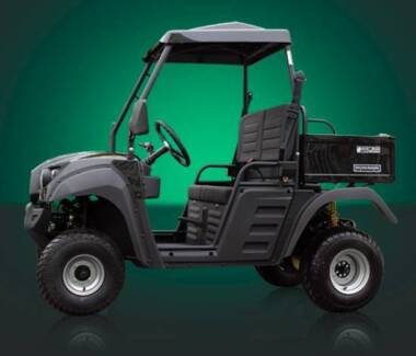150cc Hammerhead R150 UTV Farm Kart Utility ATV Petrol Ute Buggy