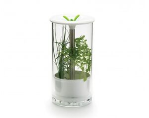 Garde-herbes fraîches - Think Kitchen Triple la durée de vie de