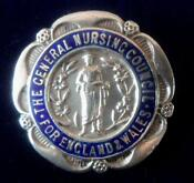 Sterling Silver Badge