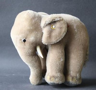 Großer Steiff Elefant ORIGINAL Knopf + Fahne-Rest 2 Stoßzähnen Glasaugen Anhänge