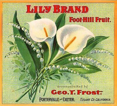 Porterville Calla Lily Flower Orange Citrus Fruit Crate Label Art Print