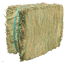 Double Pressed Alfalfa for sale