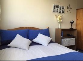 Bright and Clean Room is Available