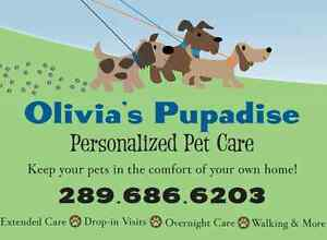 Pet Care in YOUR HOME! - Drop-ins & live-in care