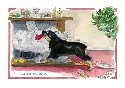 25 mixed CHRISTMAS cards. job lot , wholesale , car boot sale, inc cello bags ()