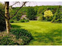Grass Cutting / Lawn Mowing Armagh Portadown Lurgan Loughgall Dungannon Moira Craigavon
