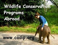 Wildlife Conservation Programs