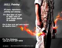 Skil painting. More than 20 years of experience paint  .