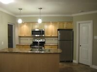 NEW CONSTRUCTION TWO YEAR OLD 1 BEDROOM WITH HEAT PUMP