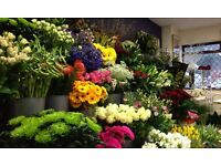 Part Time Seasonal Florist required at busy East Belfast flower shop