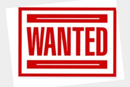 Acreage Rental Wanted Maudsland Gold Coast West Preview