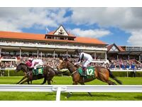 Chester race meeting tickets 1st July
