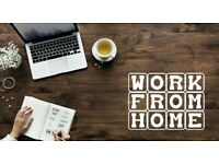 Home Biz Opportunity- No Experience required