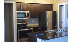 New 2 Bedroom and 2 Full Bath Apartment Near Many Amenities
