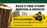 Tree Stump Removal & Services