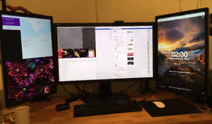 Dell Professional Monitor 24-Inch Screen LED ( Rotate )