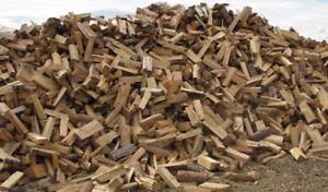 Firewood for Sale  in Sackville NB