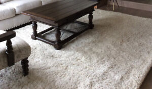 Cream Area Rug (Used for Staging)