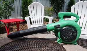 Hitachi Gas Leaf Blower, Barely used, Cost $179, Asking $115
