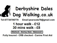 DERBYSHIRE DALES DOG WALKING - Fully Insured & CRB checked - Bakewell, Darley Dale & Matlock