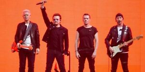 U2 rouges et parterres