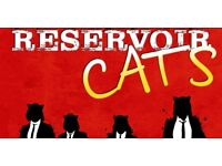 £12 ticket for sold out reservoir cats show at Wardrobe theatre Wednesday 6 December