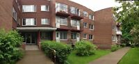 Spacious unit, safe location, professionally managed, clean