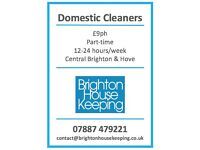 Domestic Cleaner wanted to join friendly team